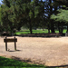 8sm-Group Picnic Area A