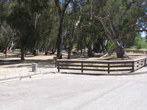 13-Grove Picnic area from parking lot