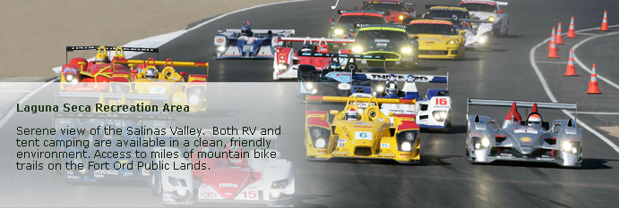 Laguna Seca page banner of cars racing