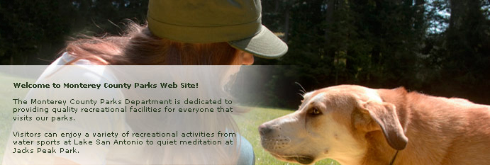 Main homepage banner of young woman with dog