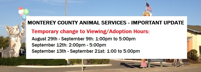 Animal Services Alternate Viewing Times_780x280