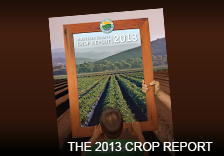 ad 2013 crop report