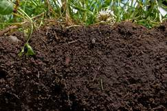 body_soil_conservation