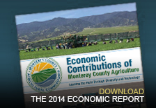 The 2014 Economic Report