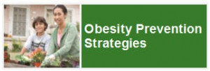 obesity prevention strategies