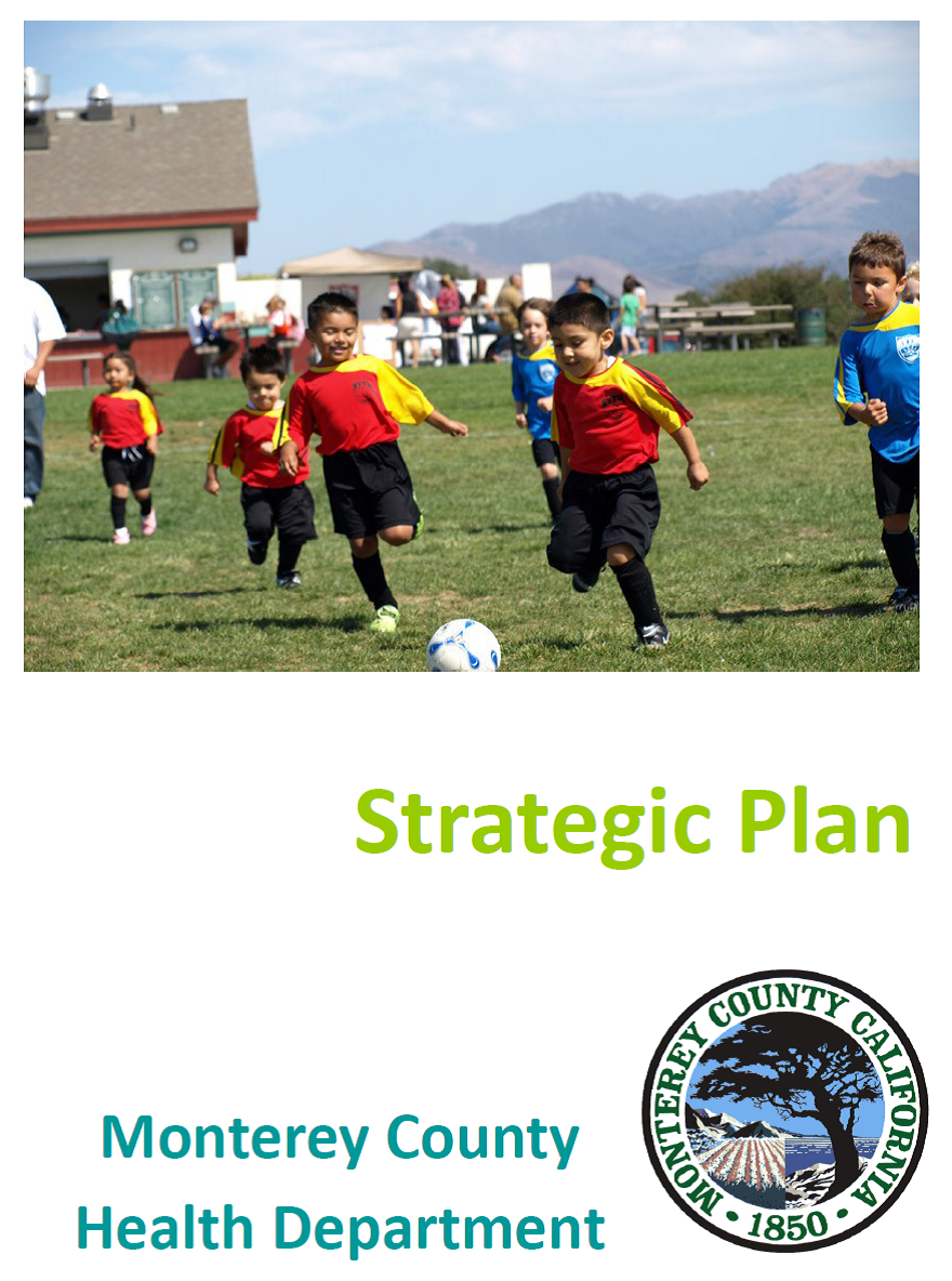 Click to read strategic plan