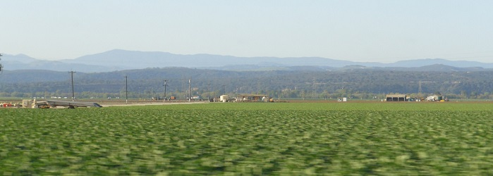 landscape view of the Salinas valley and the fields