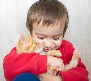 Boy holding a yellow kitten to his face