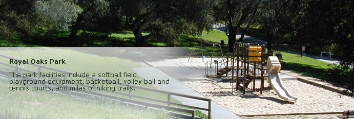 royal oaks page banner of play area