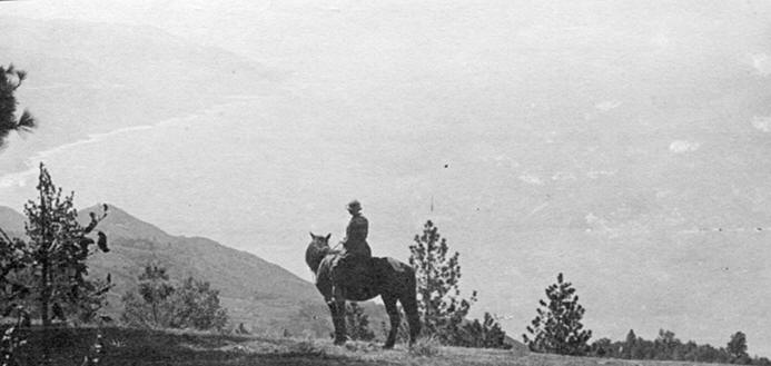photo of a horse and rider looking towards the mountains