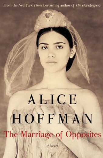 Book cover titled The Marriage of Opposites: a novel by Alice Hoffman