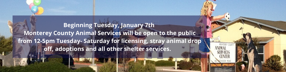 Animal Services change of hours Jan 7