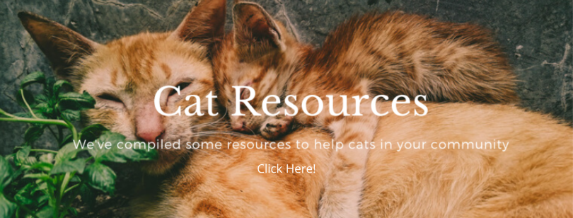 Cat Resources with click