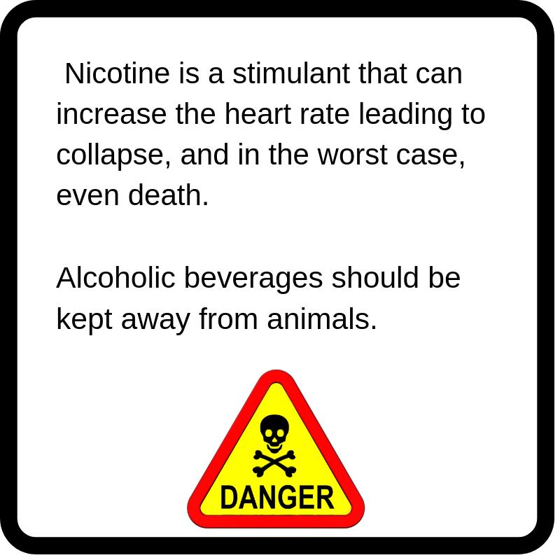 warning nicotine alcohol pets